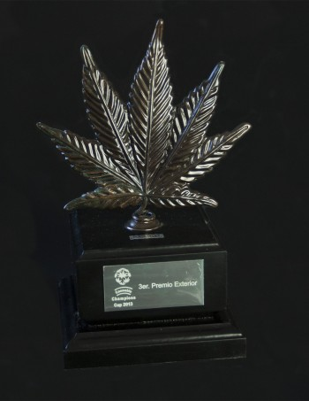 Cannabis Cup - Spannabis 2013 3rd price outdoor